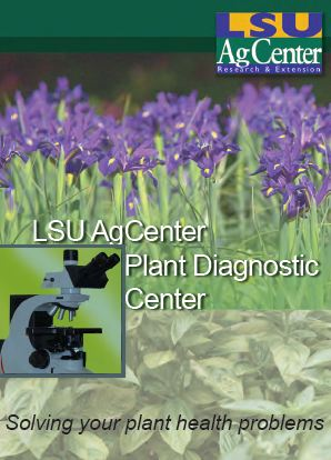 LSU AgCenter Plant Diagnostic Center Brochure