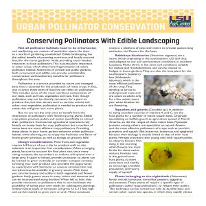 Urban Pollinator Conservation Series: Conserving Pollinators with Edible Landscaping