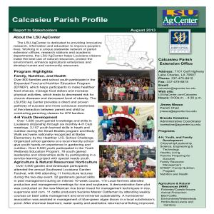 Calcasieu Parish Profile 2013