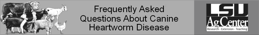Canine Heartworm Disease.png thumbnail